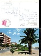 292378,Abruzzo Teramo Giulianova Lido Lungomare Promenade Palme - Teramo