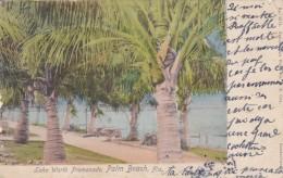 ETATS UNIS FLORIDA PALM BEACH LAKE WORTH PROMENADE BELLE CARTE RARE !!! - Palm Beach
