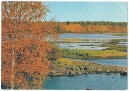 21058 - Paysage Aux Environs De Kuopio (Finlande) - Photo Dino Sassi - Scan Recto-verso - Finlandia