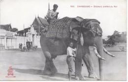 CAMBODGE - Eléphant Préféré Du Roi