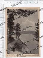 Sila Piccola Lago Ampollino ROGLIANO SANTA S. SEVERINA - Immagine Ritagliata Da Pubblicazione Originale D´epoca - Immagine Tagliata