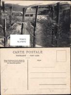 319916,Ansichtskarten Geschichte Schreibraum Zulässig Länder M. Privatkorrespondenz P - Post & Briefboten