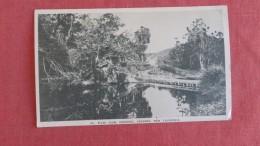 River Level Crossing  Saramea    New Caledonia -------ref  2277 - New Caledonia