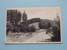 Vallée Du Franckenbach MANDERFELD () Anno 1956 ( Zie Foto Voor Details ) !! - Bullange - Buellingen