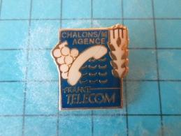 PIN216a Pin´s Pins /       FRANCE TELECOM : VIGNE RAISIN EPI DE BLE CHALONS SUR MARNE AGENCE     INSCRIPTION AU DOS ,  V - France Telecom