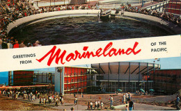 Etats-Unis - California - Los Angeles - Greetings From Marineland Of The Pacific - état - Los Angeles