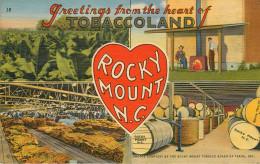 Etats-Unis - Tabac - North Carolina - Greetings From The Heart Of Tobaccoland - Rocky Mount - Tobacco Field - Etats-Unis