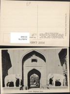 351860,Delhi Elephant Gate Elefanten Statuen Tor - Indien