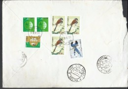 China Registered Airmail 2002 Birds  540 分 Tibetean Bunting (Emberiza Koslowi), Conservation Of Ocean Resources - 1949 - ... République Populaire