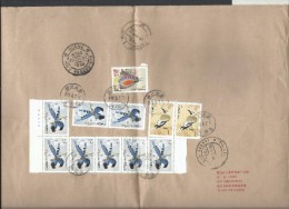 China Registered Airmail 2002 Birds Nature Wild Life Postal History Cover Sent To Pakistan - 1949 - ... Volksrepubliek