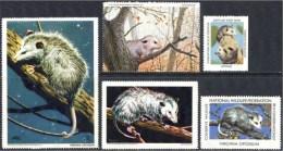 Etats Unis, USA. Opossum. 5 Timbres / Vignettes, National Wildlife Fed. - Autres