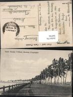 360786,India Mumbai Bombay North Hornby Villard Straßenansicht Palmen - Indien