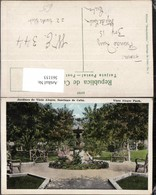361153,Cuba Kuba Santiage De Cuba Jardines De Vista Alegre Park - Ansichtskarten