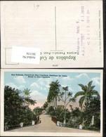 361154,Cuba Kuba Santiage De Cuba Dos Palmas Carretera Dos Caminos Palmen - Ansichtskarten