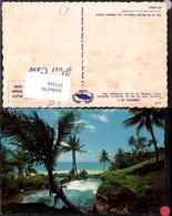 375168,Jamaica Tropical View Out To The Caribbean Sea Strand Palmen - Ansichtskarten