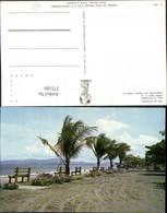 375180,Costa Rica Vista De Puntarenas Strand Palmen - Costa Rica