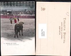 388325,Sport Stierkampf Corrida De Toros Un Par De Cayetanito - Stierkampf