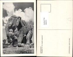 390351,India Konarak Elephant In The Temple Compound Elefant Statue - Indien