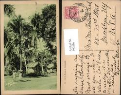390536,Cuba Sur La Route De Testasse Hütten Palmen - Ansichtskarten
