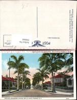 398860,Panama Bella Vista Avenida Mariano Arosemena Straßenansicht Palmen - Panama