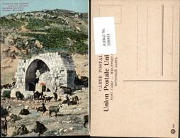 398953,Palästina Jericho Apostels Fountain Brunnen - Ansichtskarten