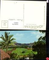 399012,Fidschi Fiji Penang Valley Landschaft Palme - Ansichtskarten