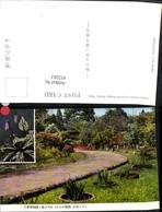 412263,Japan Nara Kasuga Shrine Mannyo Botanical Garden Garten - Ohne Zuordnung