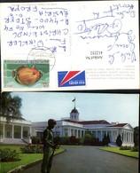 412252,Indonesia Bogor Presidential Palace Palast Soldat - Indonesien