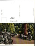 412195,Japan Nara Kasuga Shrine Avenue Of Lanterns Laternen - Ohne Zuordnung