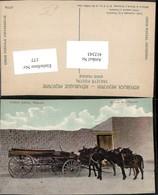 412343,Mexico Chihuahua Ciudad Juarez Mexican Wood Wagons Wagen Eseln - Mexiko