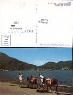 412303,Haiti Harbor Of The City Of Cap-Haitien Volkstypen Eseln - Ansichtskarten