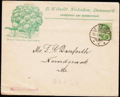 1901. 5 øre NAKSKOV 30.1.01. Reklame WIBOLTTS DANISH BALL HEAD CABBAGE. To USA.  (Michel: ) - JF194842 - 1864-04 (Christian IX)