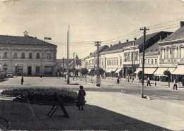 DARUVAR (Jugoslawien) - Hotel Slavoni..?, Gel., Abgelöste Marke, Karte Beschädigt Siehe Scan - Jugoslawien