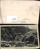 432997,New Zealand Neuseeland Crystal Mountain Streams Fluss Schafe - Ansichtskarten