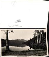 432983,New Zealand Neuseeland Westland Lake Kanacri See - Ansichtskarten