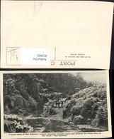 432982,New Zealand Neuseeland Crystal Mountain Streams Fluss Schafe - Ansichtskarten