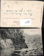 433011,New Zealand Neuseeland Wanganui River Fluss - Ansichtskarten