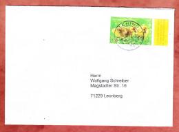 Brief, EF Tierkinder Graugans, Olching Nach Leonberg 2016 (31182) - [7] République Fédérale