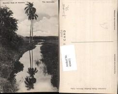434411,Cuba Kuba Havana Country Club Sentinels Landschaft Palmen - Ansichtskarten