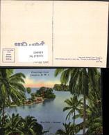 434401,Jamaica Blue Hole Portland Palmen - Ansichtskarten