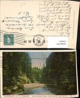 434613,British Columbia Vancouver Capilano Suspension Bridge Brücke - Kanada
