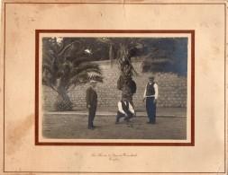 65TL    Grande Photo (26cm X 21cm) Partie De Pétanque Boules à Toulon Photo Rosa Quai De Cronstadt - Pétanque