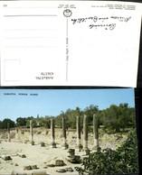 436378,Palästina Sabastia Sebastia Roman Ruins Ruinen Säulen - Ansichtskarten