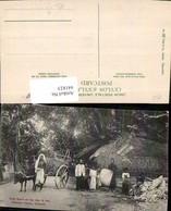 441823,Ceylon Sri Lanka Colombo Kelanlya Temple Road Scene Volkstypen - Sri Lanka (Ceylon)