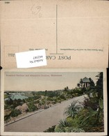 442587,Australia Melbourne Botanical Gardens And Alexandra Avenue Straße - Ansichtskarten