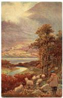 SHEPHERD & FLOCK : SCOTLAND - ART CARD - Breeding