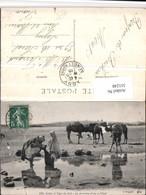 511248,Scenes Et Types Du Sud La Provision D'eau A L'Oued Typen Kamele - Ansichtskarten