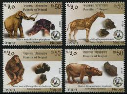 NEPAL 2013 - Animaux, Fossiles Du Nepal - 4 Val Neuf // Mnh - Nepal