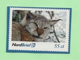 Privatpost -  Nordbrief  -    Luchs (Lynx Lynx) - BRD