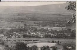 D63 - ST REMY DE CHARGNAT - VUE GENERALE - CPSM Petit Format - Sonstige Gemeinden